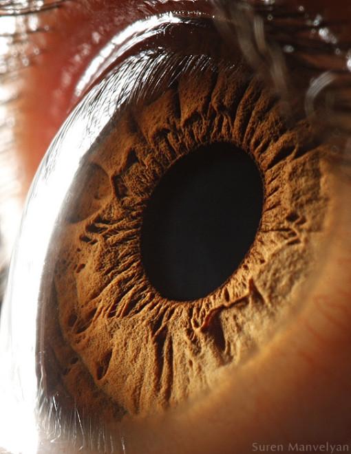occhi_visti_da_vicino-32